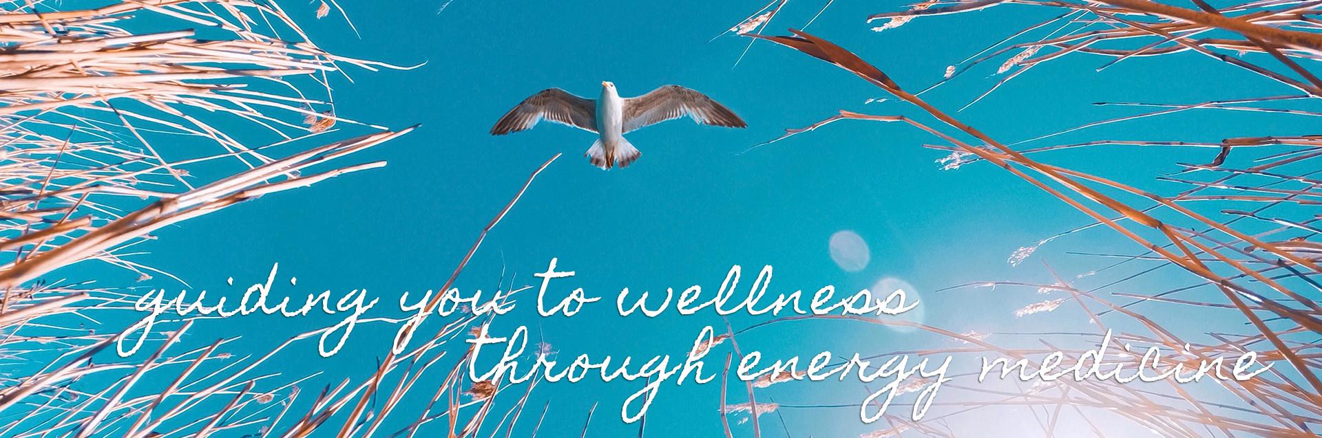 guiding you to wellness through energy medicine