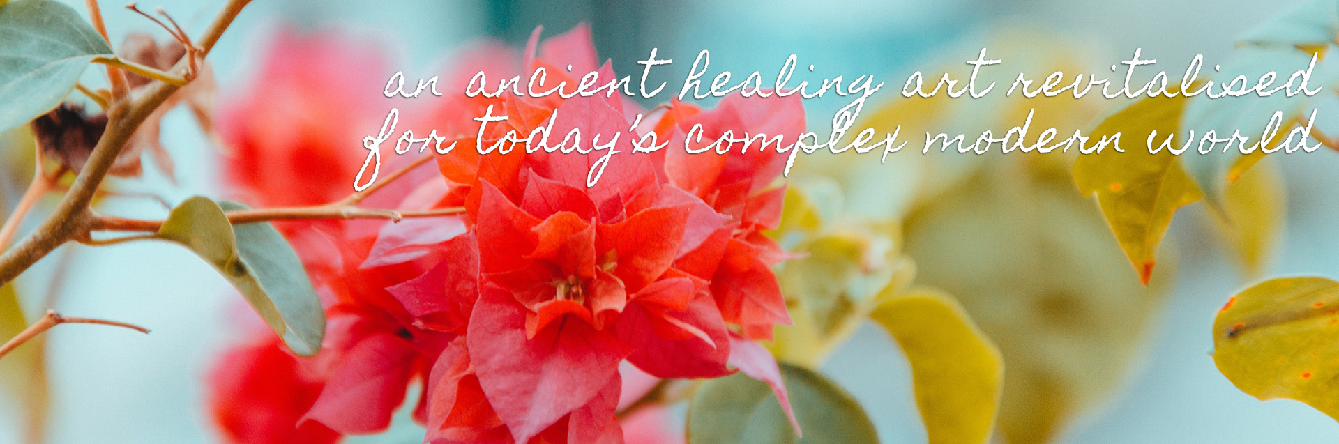 an ancient healing art revitalised for todays complex modern world